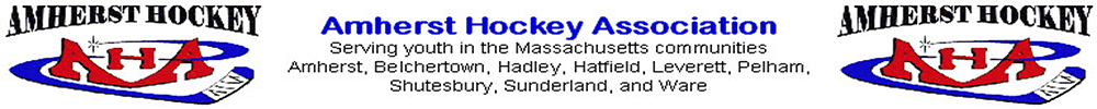 Amherst Hockey Association, Hockey, Goal, Rink