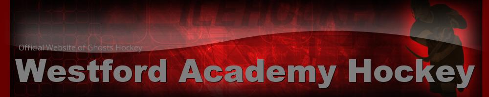 Westford Academy Hockey, Hockey, Goal, Rink