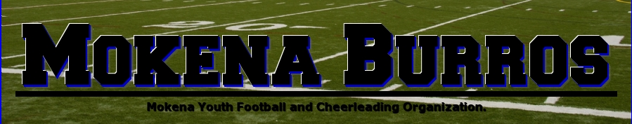 Mokena Burros, football & cheerleading, Goal, Field