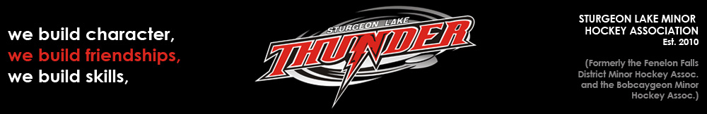 Sturgeon Lake Minor Hockey Assoc., Hockey, Goal, Rink