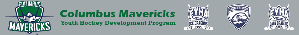 Easton Youth Hockey Association, Hockey, Goal, Rink