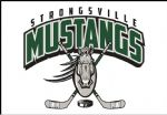 Strongsville Youth Hockey Club (SYHC), Hockey