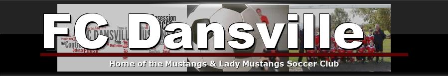 FC Dansville, Soccer, Goal, Pitch