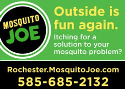 Mosquito Joe of Rochester