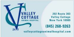 Homerun Sponsor - Valley Cottage Animal Hospital