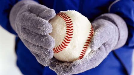 winter league baseball:
