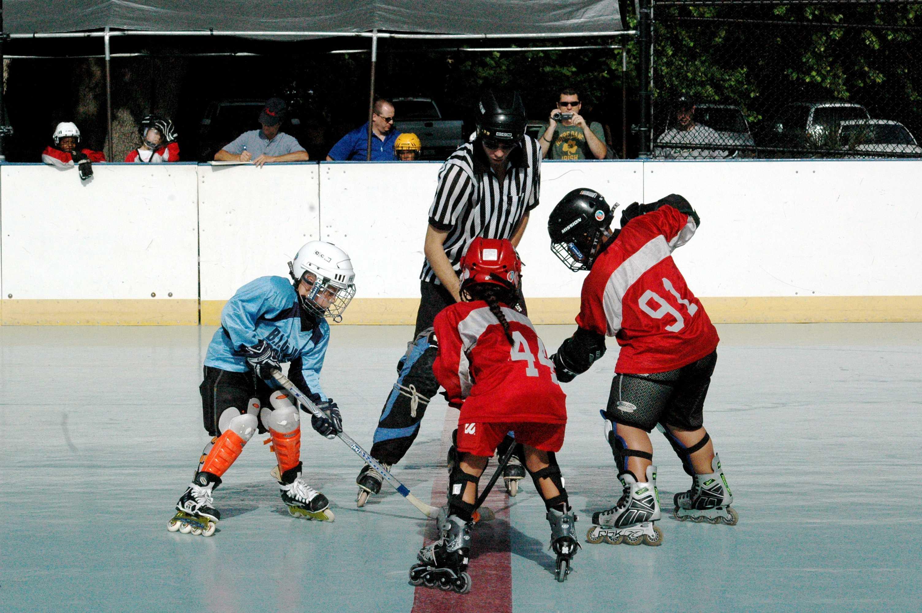 Lakeland Roller Hockey League Lakeland Lacrosse