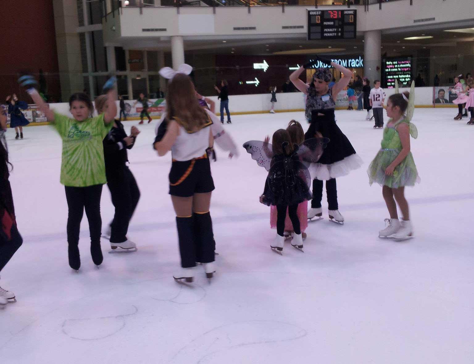 Ice Hockey & Skating - Parks & Recreation
