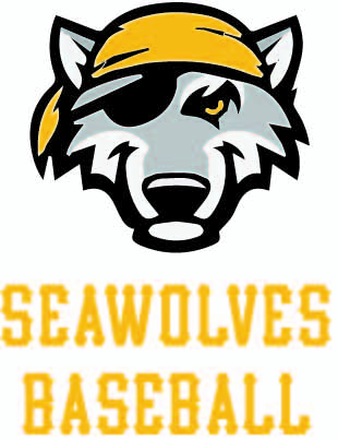seawolves tryouts 365 sports academy llc