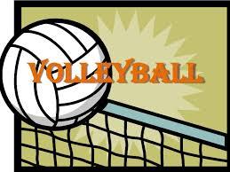 Volleyball Cyo Dutchess County