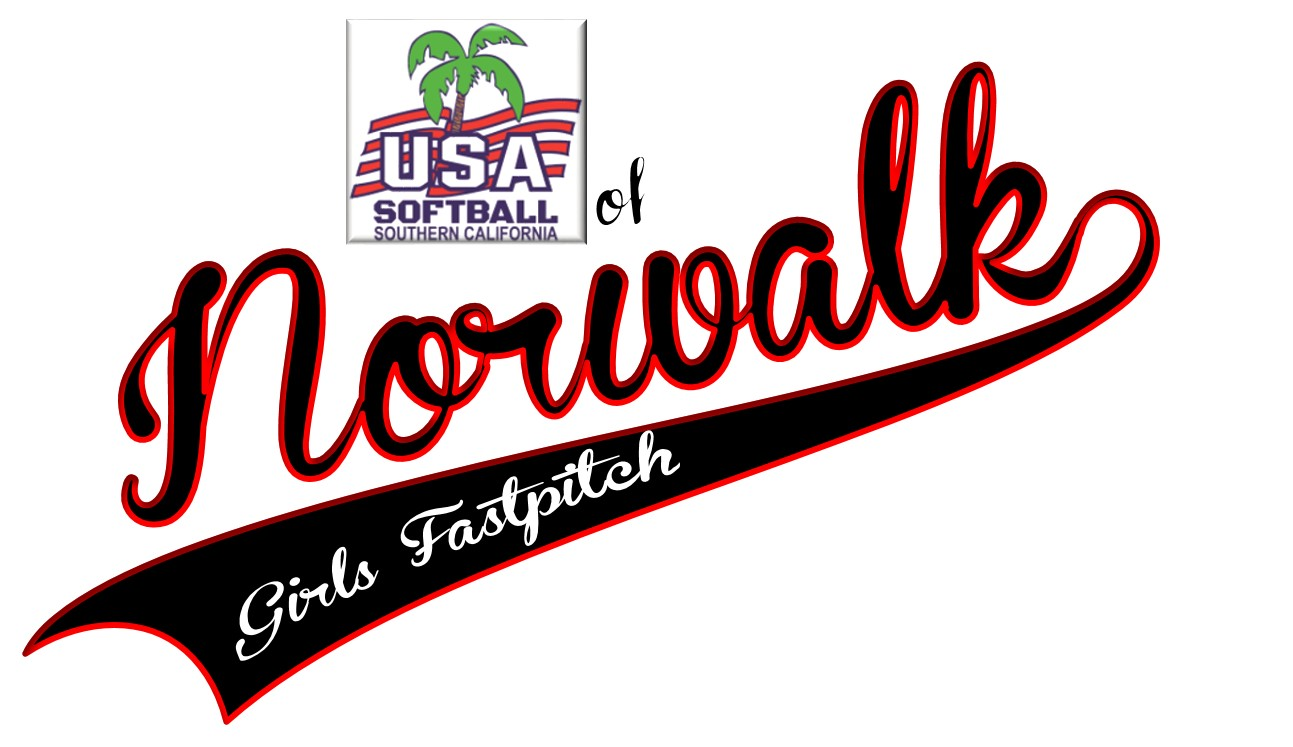 Player tryouts evaluation info usa softball of norwalk 2017 usa softball of norwalk aiddatafo Gallery