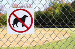 No dogs allowed on PLL Fields