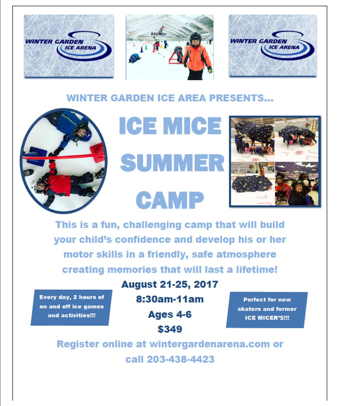 ice mice camp ages 4 6 winter garden ice arena llc