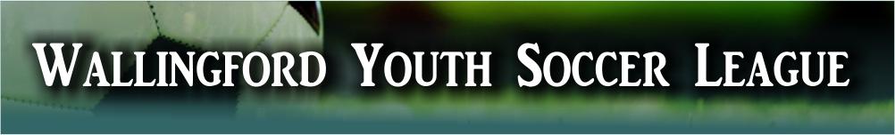 Wallingford Youth Soccer League, Soccer, Goal, Field